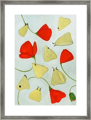 Aak 1630269 Framed Print