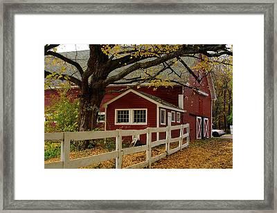 Aaron Smith Farm Autumn 4 Framed Print