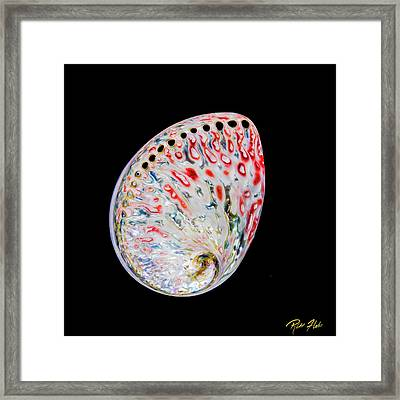 Framed Print featuring the photograph Abalone - Touches Of Red by Rikk Flohr