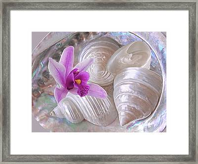 Abalone With Pearl Shells And Purple Orchid Framed Print