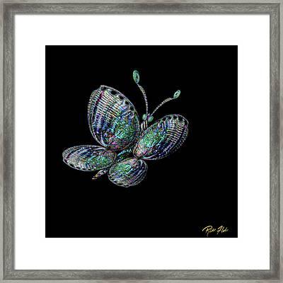 Abalonefly Framed Print