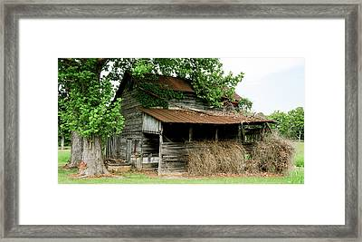 Abandoned Barn Southern Tennessee Framed Print