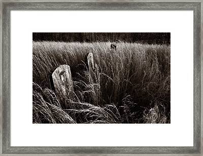 Abandoned Cemetery Midwest Framed Print by Steve Gadomski