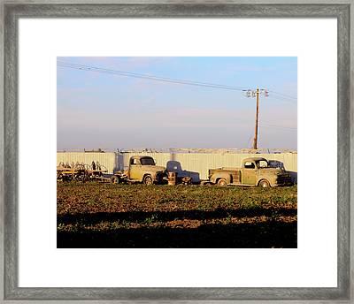 Abandoned Farm Trucks Tracy Ca Framed Print by Troy Montemayor