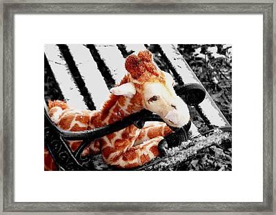 Abandoned  Framed Print by Karen Scovill