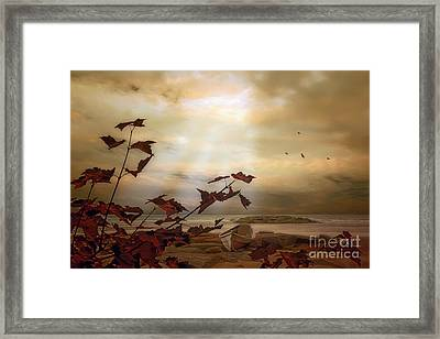Abandoned On The Shore Framed Print