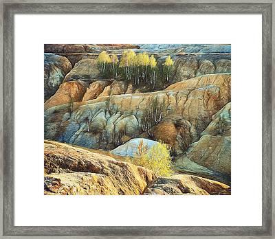 Abandoned Quarry 2 Framed Print