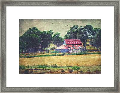 Abandoned Red Tin Roof Barn Framed Print by Anna Louise