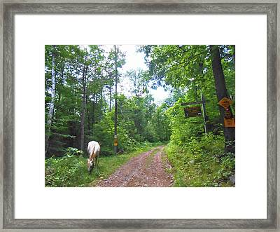 Abandoned Road Scenic Framed Print