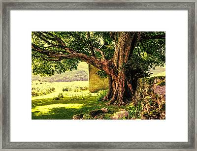 Abandoned Ruins Framed Print by Jenny Rainbow