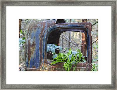 Abandoned Rusted Car - New Hampshire Forest Framed Print by Erin Paul Donovan