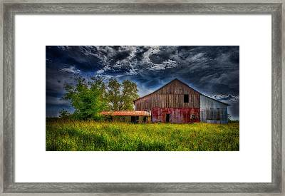 Abandoned Through The Reeds Framed Print by Bill Tiepelman