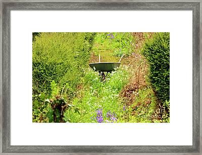 Abandoned Wheelbarrow Framed Print by Terri Waters