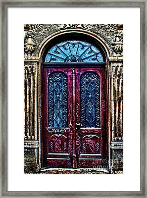 Abandoned Wooden Door Framed Print by Milan Karadzic