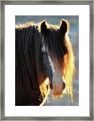 Abbey Glowing Framed Print by Terry Kirkland Cook