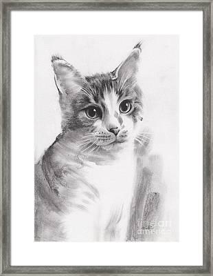 Abbie Framed Print