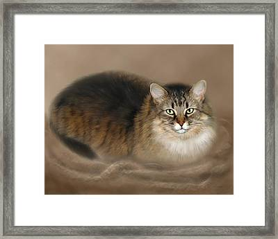 Abby Framed Print by Barbara Hymer