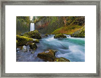 Abiqua Falls In Spring Framed Print by David Gn