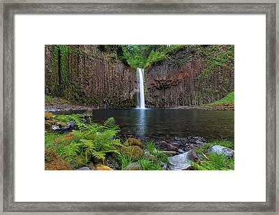 Abiqua Falls In Summer Framed Print by David Gn