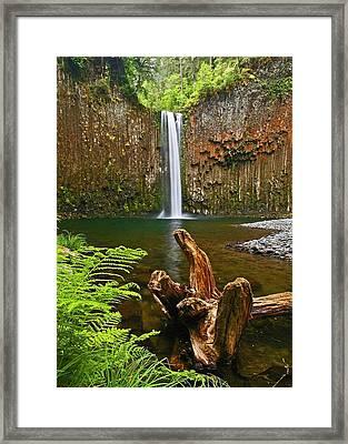 Abiqua Falls Oregon Framed Print