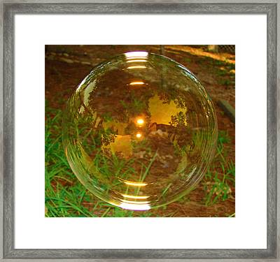 About To Pop Framed Print by Laura Brightwood