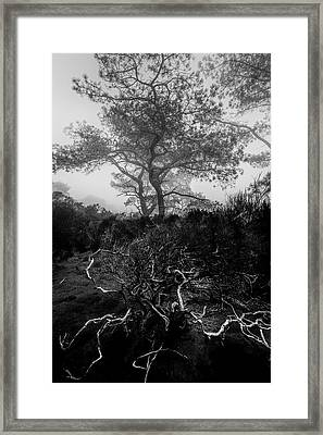 Above And Below Framed Print by Joseph Smith