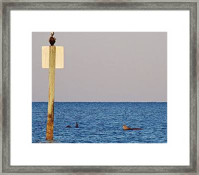 Above  Below And Around Me. Framed Print