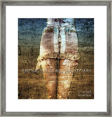Above Ground Anatomy  Framed Print by Steven Digman
