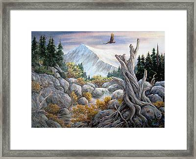 Above It All Framed Print by Don Trout