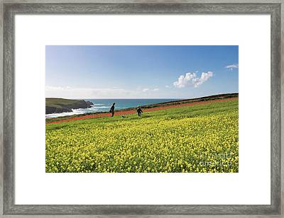 Above Polly Joke Framed Print by Terri Waters