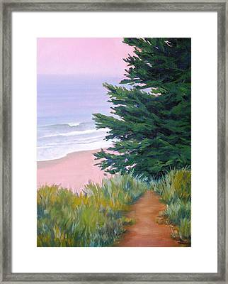 Above The Beach El Capitan Framed Print by Dorothy Nalls