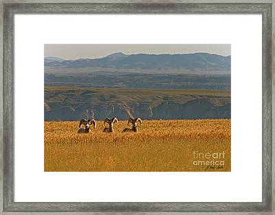 Above The Breaks-signed-#9386 Framed Print