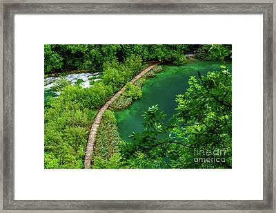 Above The Paths At Plitvice Lakes National Park, Croatia Framed Print