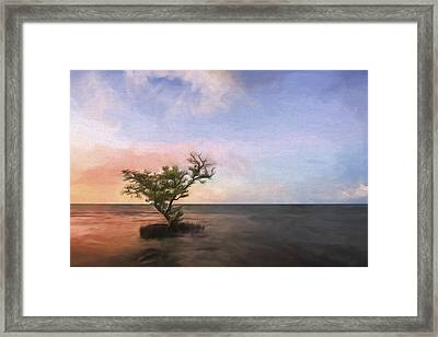 Above The Tide II Framed Print by Jon Glaser