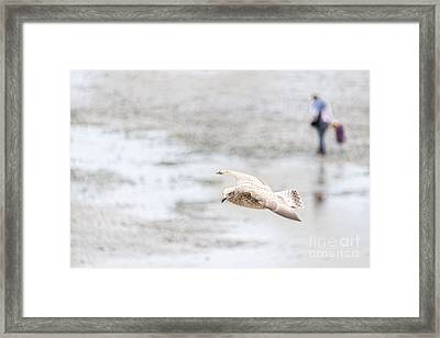 Framed Print featuring the photograph Above The Watten Sea 2 by Hannes Cmarits