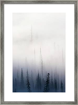 Above Them All Framed Print by Mike  Dawson