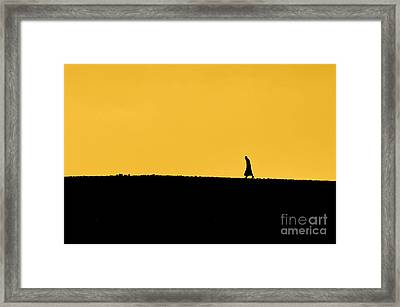 Abraham's Journey Framed Print