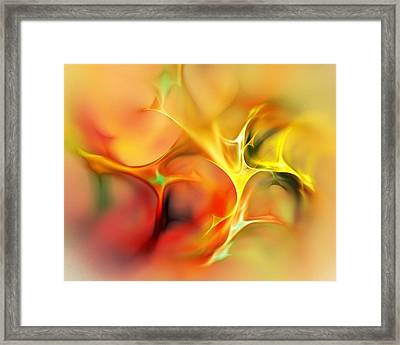 Abstract 061410a Framed Print