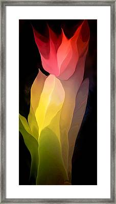 Abstract 082312 Framed Print