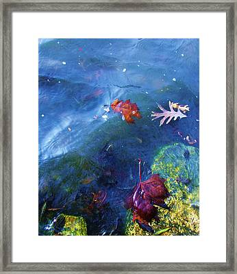Abstract-10 Framed Print by Todd Sherlock