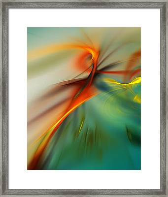 Abstract 110910b Framed Print by David Lane