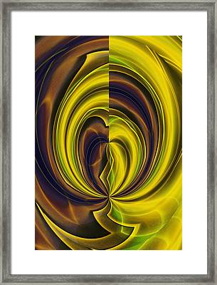 Abstract 121510 Framed Print