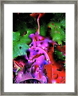Abstract 35 Framed Print by Pamela Cooper