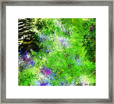 Abstract 5-26-09 Framed Print by David Lane
