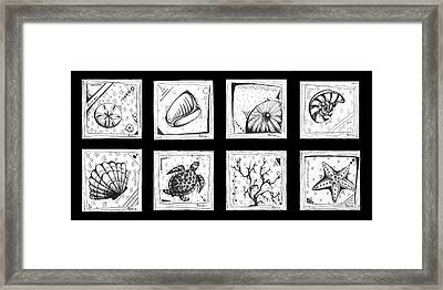 Abstract Art Contemporary Coastal Sea Shell Sketch Collection By Madart Framed Print