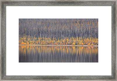 Framed Print featuring the photograph Abstract Autumn by Al Swasey