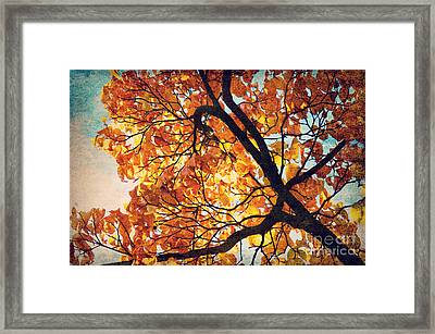 Abstract Autumn Impression Framed Print