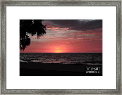 Abstract Beach Palm Tree Sunset Framed Print