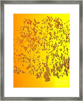 Abstract Beer Background Framed Print