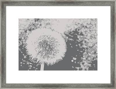 Abstract Black And White Dandelion Photo Art Framed Print